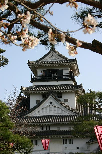 桜と天守閣.jpg